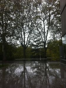 otoño 2012 609
